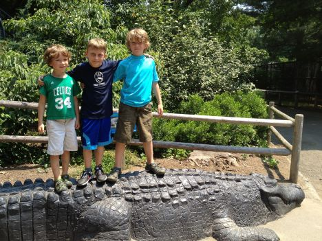 descriptive essay the zoo Free essay: descriptive essay september 27, 2014 english 1010 - 85 a mini vacation to atlanta, georgia traveling is one of my family's favorite things to do.